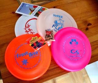Frisbees-1 %Hundeblog