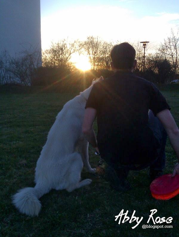IMAG0477-1 %Hundeblog