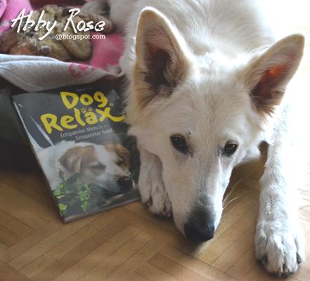 dog_relax-1 %Hundeblog