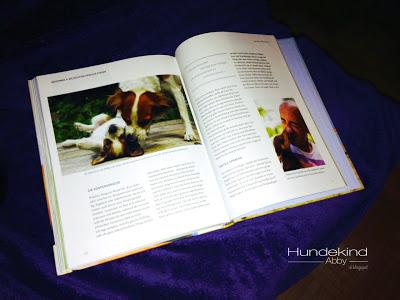 Foto1-1 %Hundeblog