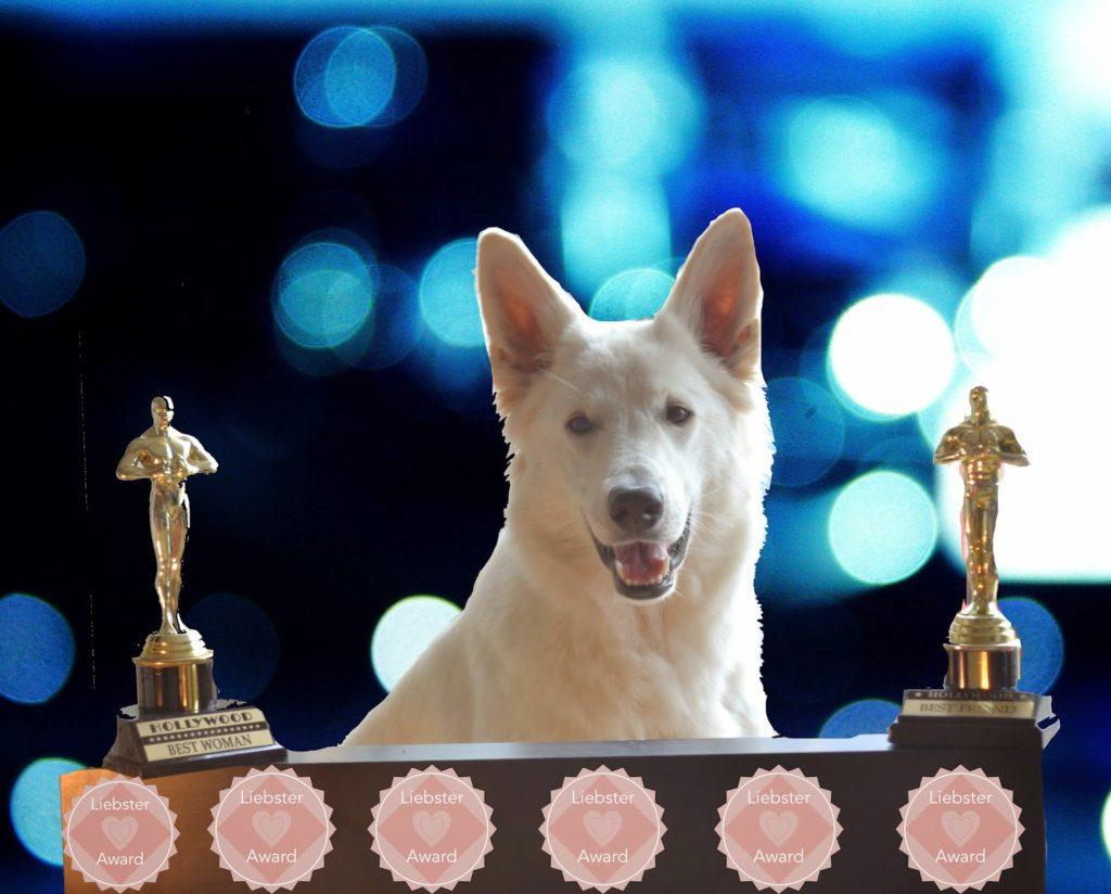 Liebster_Award-1-1024x824 %Hundeblog