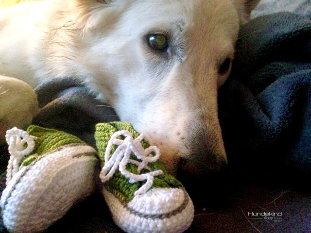Babysorgen-1 %Hundeblog