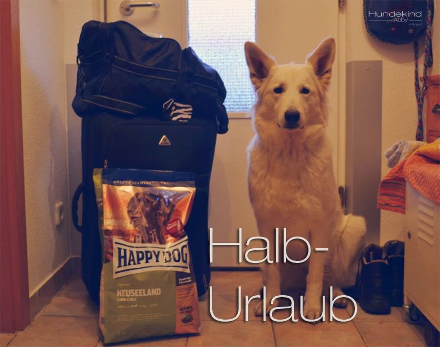Halburlaub-1 %Hundeblog