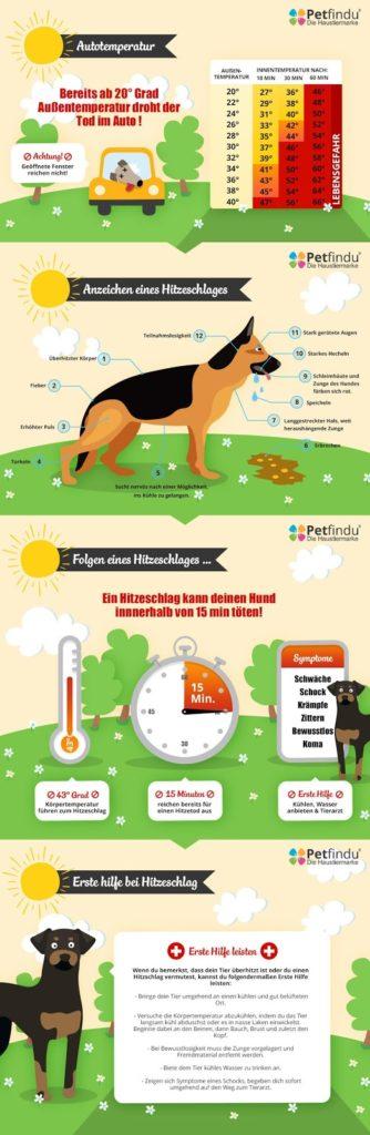 Hund_und_Hitze-1-334x1024 %Hundeblog