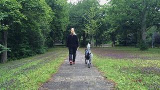 Lockere-Leine-1 %Hundeblog