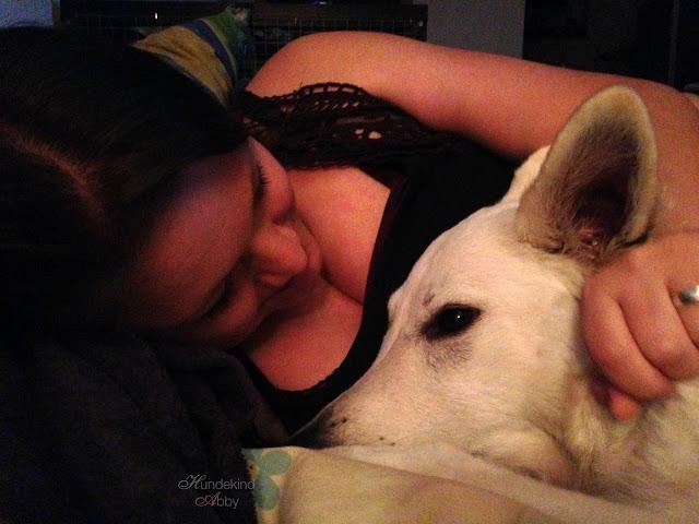 IMG_7209-1 %Hundeblog