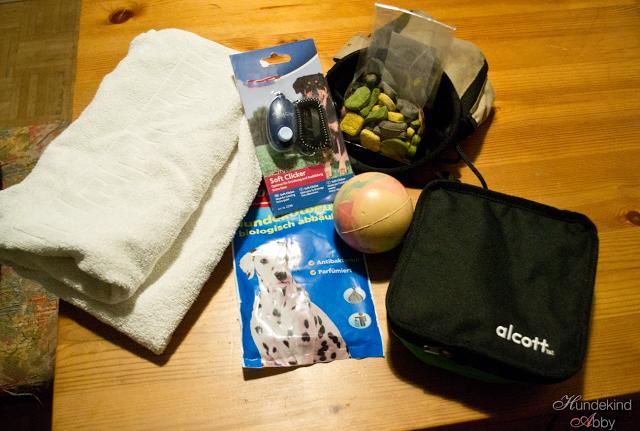 Ich_packe_meine_Autotasche-1 %Hundeblog