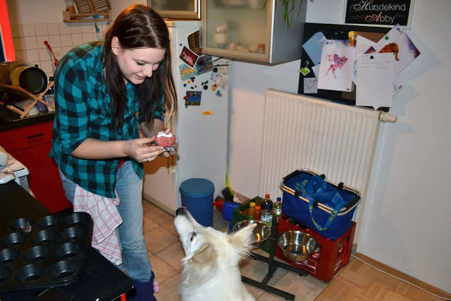 Abby_Geburtstagskuchen-1 %Hundeblog