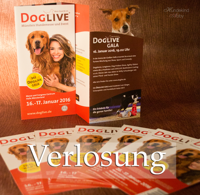 Doglive-Verlosung-1 %Hundeblog