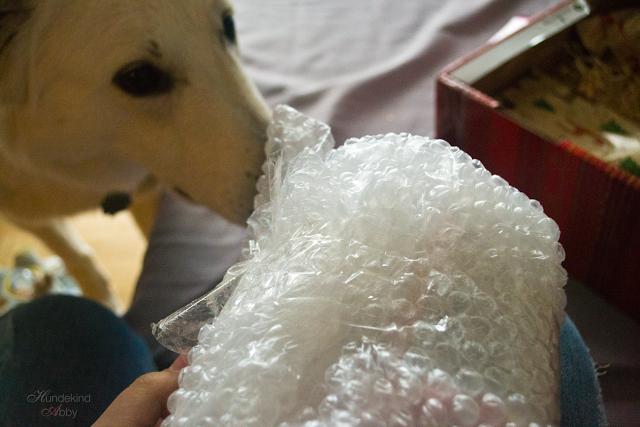 Weihnachtswichtel-auspacken-1 %Hundeblog