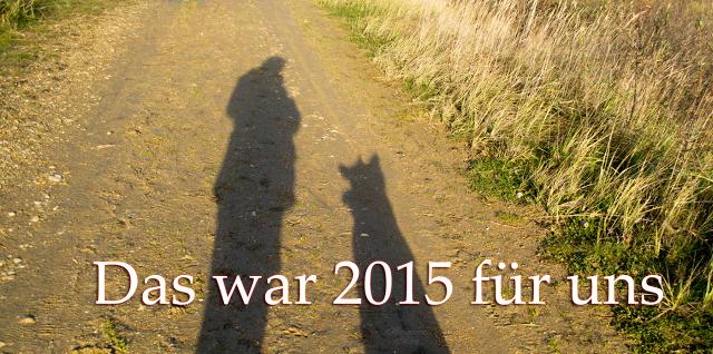Jahresrueckblick2015-1 %Hundeblog