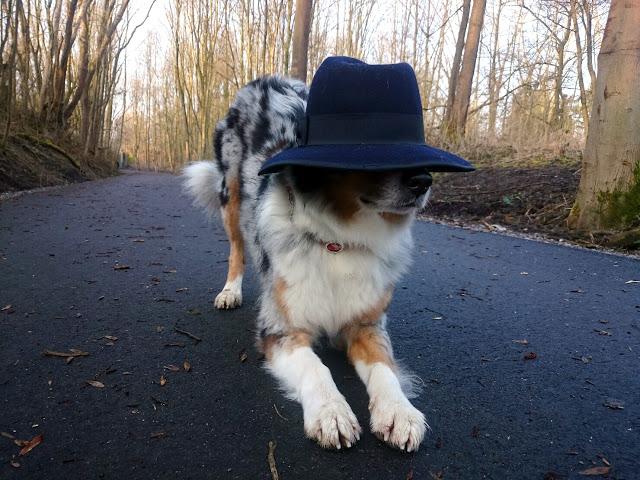Emmely-verbeugen-1 %Hundeblog