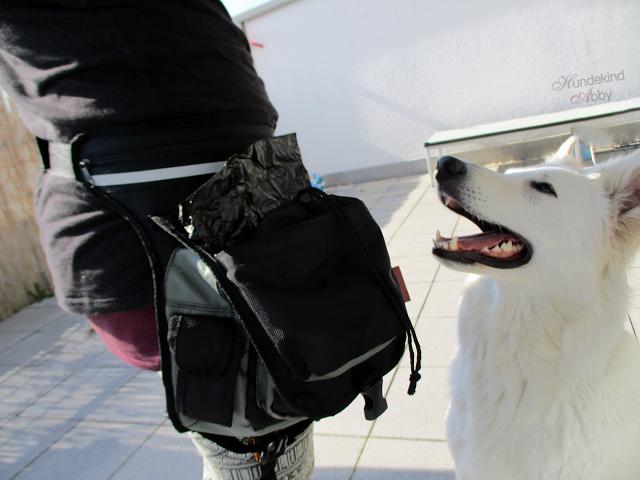 Bauchtasche-Tragefoto-1 %Hundeblog