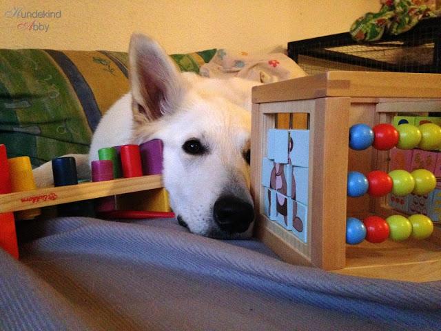 KindundHundSpielzeug-1 %Hundeblog