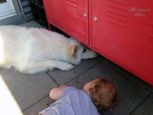 KindundHundWeinen-1 %Hundeblog