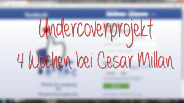 Undercoverprojekt-Teil1-1 %Hundeblog