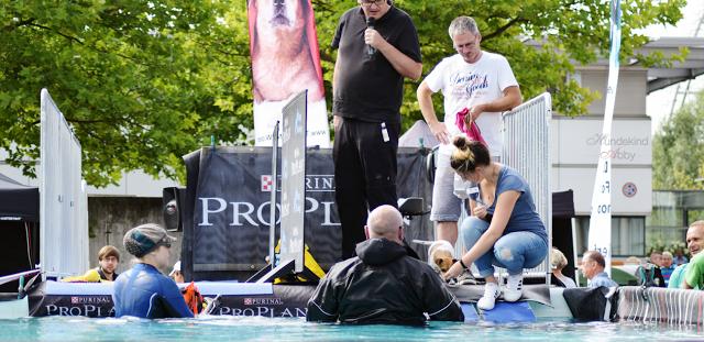 Haustiermesse-Dogdiving4-1 %Hundeblog