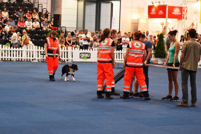 Haustiermesse-Sani2-1 %Hundeblog