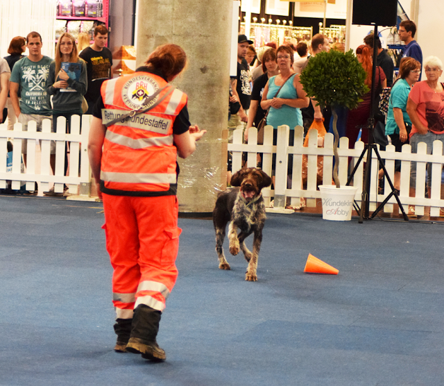 Haustiermesse-Sani8-1 %Hundeblog