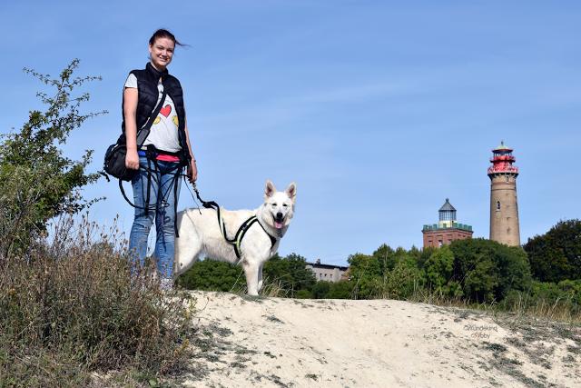 Abbyundich-klein-1 %Hundeblog