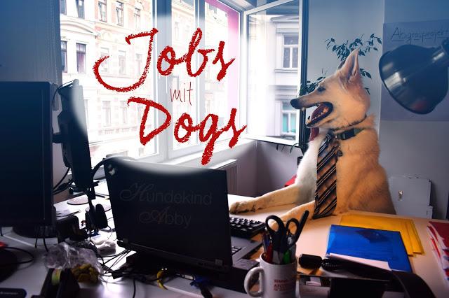 JobsmitDogs-1 %Hundeblog