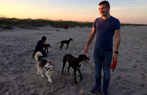 Strand-1 %Hundeblog