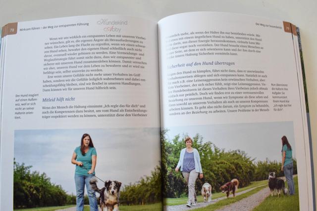 BlickinsBuch-1 %Hundeblog