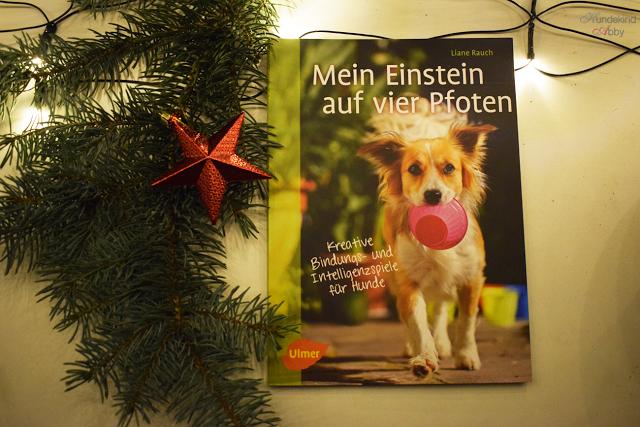 EinsteinaufvierPfoten-1 %Hundeblog