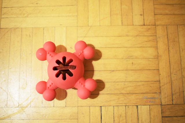 Futterball-1 %Hundeblog