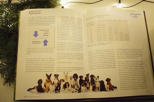 RHZ-BlickinsBuch-1 %Hundeblog