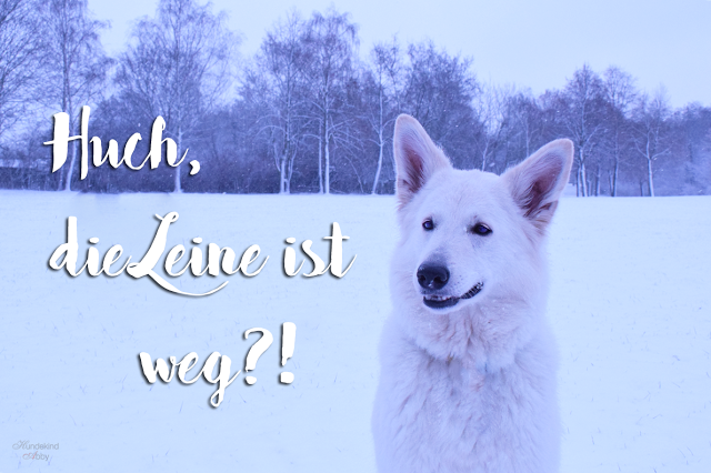 HuchdieLeineistweg-1 %Hundeblog