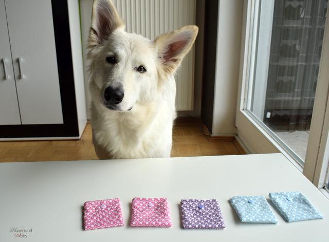 Abby-Schnueffelmemory-1 %Hundeblog