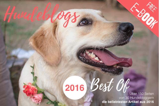 HeaderEBookBestOfHundeblogs20161-1 %Hundeblog