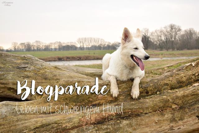 Blogparade-SchwierigerHund-1 %Hundeblog