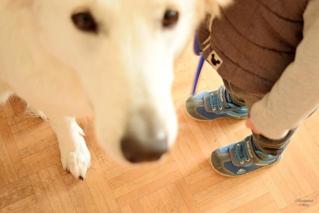 KindundHund2-1 %Hundeblog