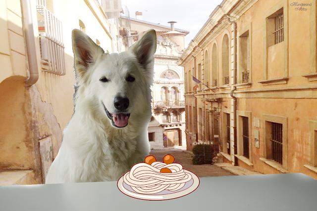 SusiundStrolch-1 %Hundeblog