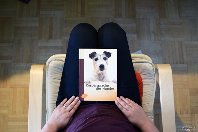 KC3B6rpersprachedesHundes-1 %Hundeblog
