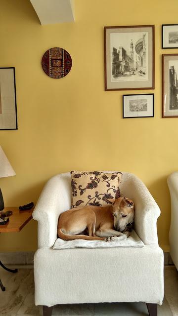 Kibaarmchairuwm-1 %Hundeblog