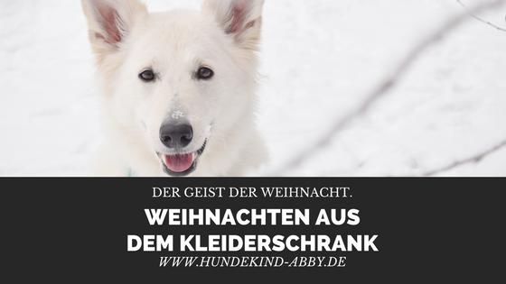 ANEXCLUSIVEGUIDETO-1 %Hundeblog