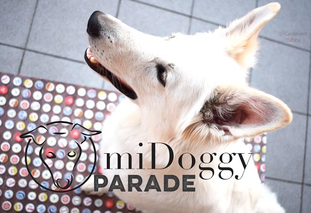 miDoggyParade-1 %Hundeblog